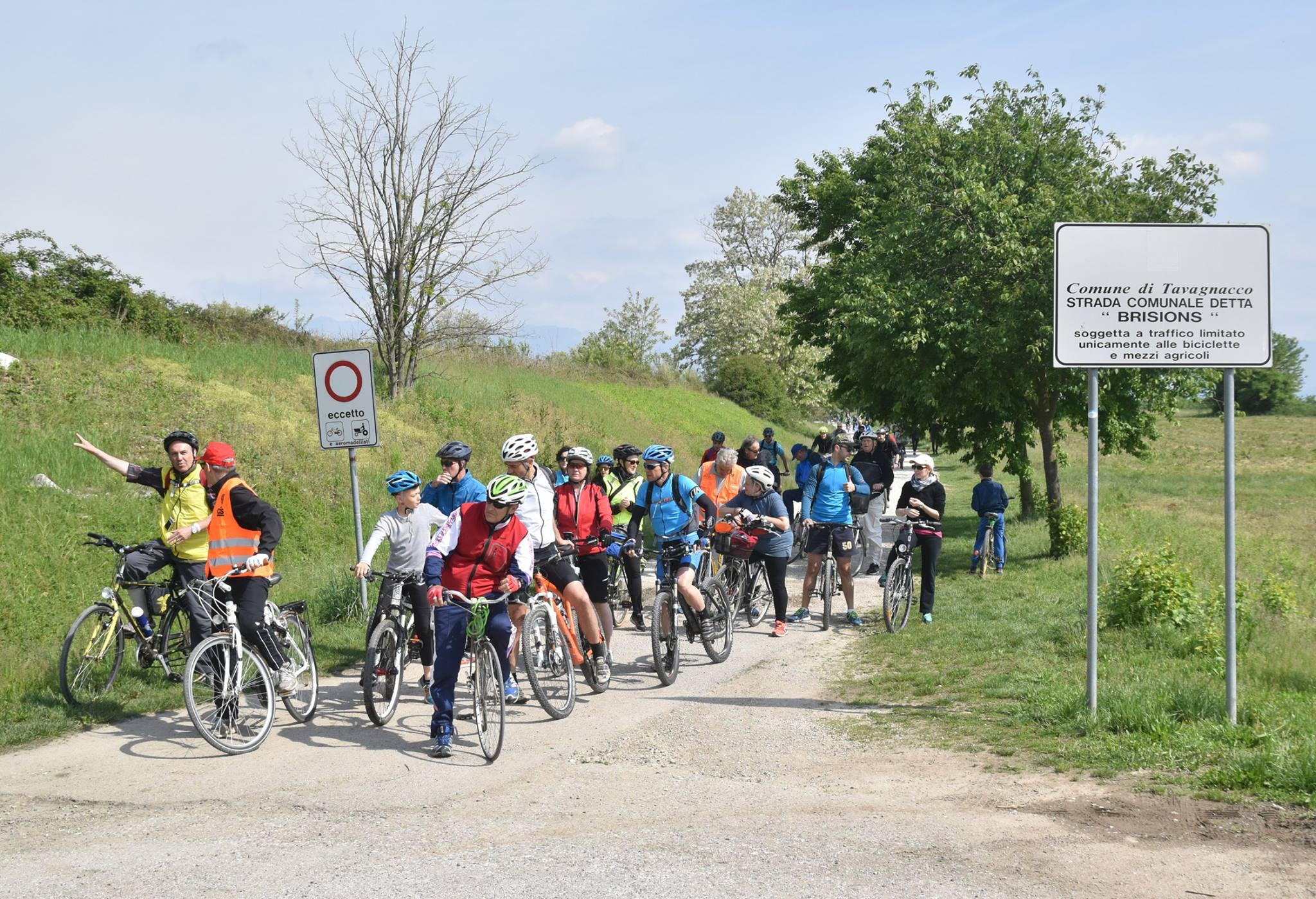 Vacanza in bicicletta lungo la Ciclabile Alpe Adria
